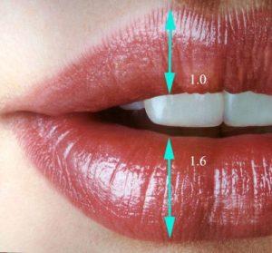 labios Medicina Estética Facial Valencia Precio